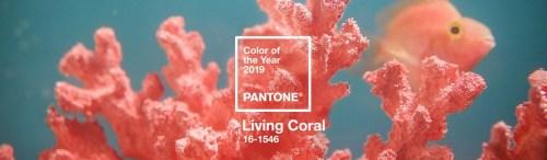 Pantone 2019 Glamroom รีวิว เล็บเจล ยูนิลีเวอร์ มือซ้าย